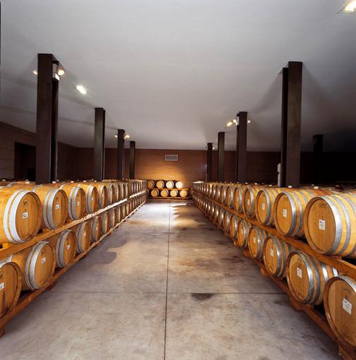 Consumi sotto tono per il vino piemontese
