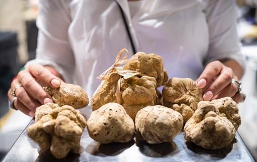 Il tartufo, nuova materia di studio all'Alberghiero in Piemonte