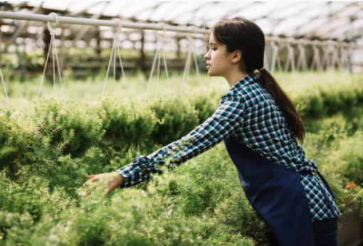 Coldiretti Piemonte: preservare il suolo per continuare a garantire produzioni agricole di qualità