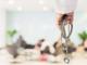 Corte dei conti: no allo smantellamento dei piccoli ospedali