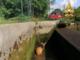 Borgomanero: capriolo cade all'interno del canale Mora, salvato dai vigili del fuoco