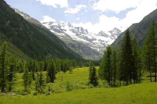 Climbing for Climate, gli atenei piemontesi uniti per sensibilizzare sui cambiamenti climatici