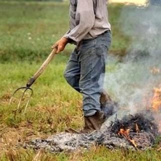 Abbruciamenti residui vegetali: introdotta la possibilità di deroga nel periodo di divieto