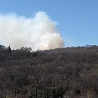 Vasto incendio ieri sul Mottarone