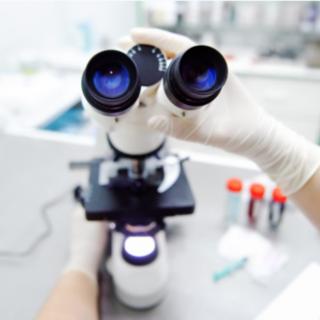 "Coronavirus, 12 nuovi laboratori per i test Covid-19. Icardi: ""Abbiamo triplicato i tamponi"""