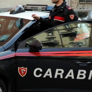 Notizie dal Piemonte. Rivoli: uccide il cane che lo ha morso e brucia la carcassa, arrestato 43enne