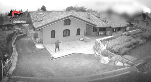 Notizie dal Piemonte. Da Rivoli a Perugia: smantellata la banda che svaligiava le case a colpi di bastone [VIDEO]