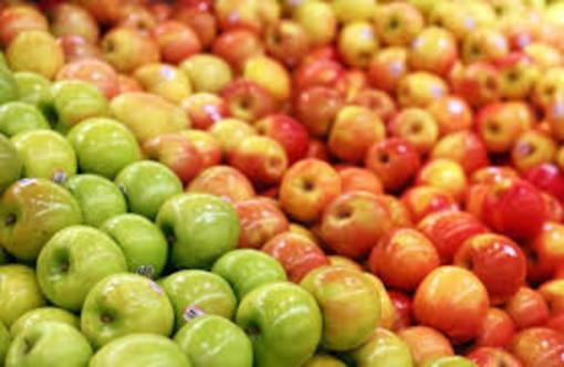 Domenica 11 a Soriso la Sagra delle mele antiche